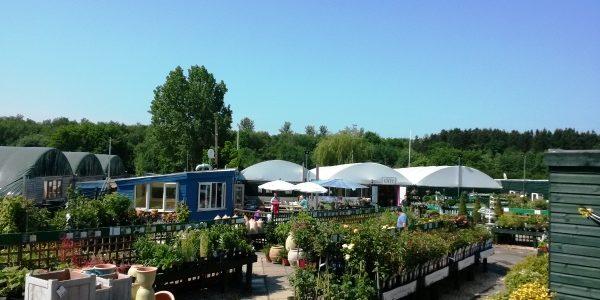 garden-centre-outside