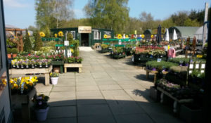 garden centre outside